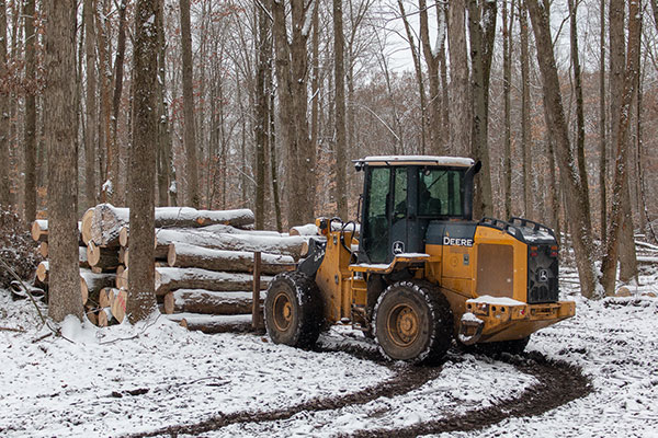 The harvesting process requires at least 10 acres of woodlot.