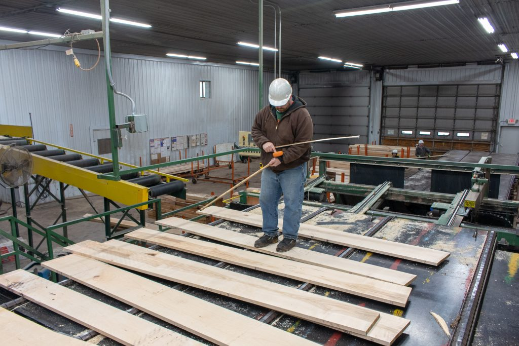 A forester stands a top lumber. Post Hardwoods is one of the top timber companies in Michigan.